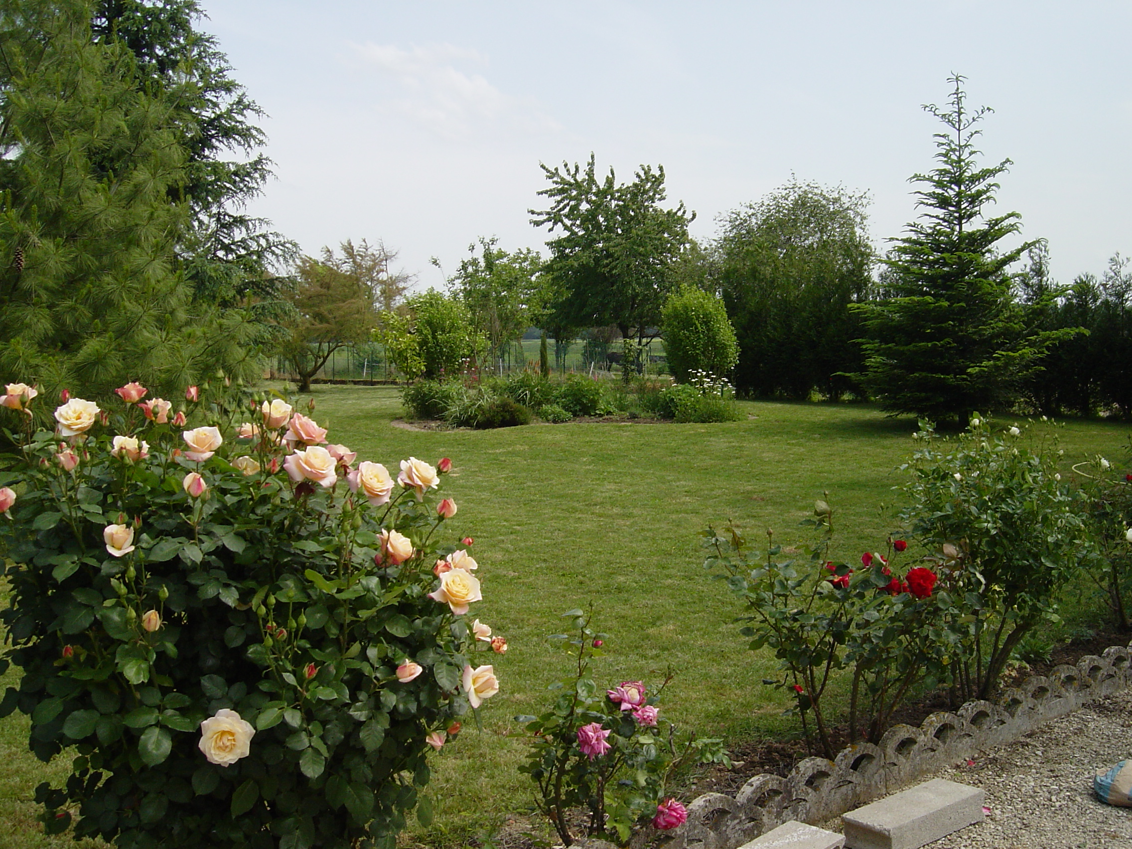 Jardin paysager photo id es de for Idees jardins paysagers